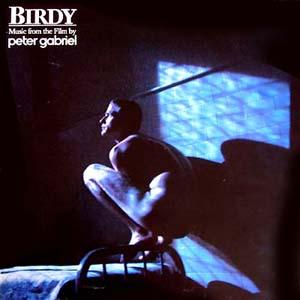 Birdy_CAS1167.jpg